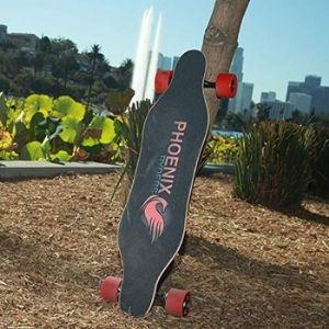 Alouette Phoenix Ryders Electric Skateboard under 500