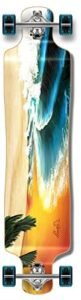 Yocaher beach series longboard review